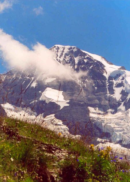 1. The Eiger, with flowers and cloud, from Wengen, Switzerland - 2003