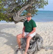 Bob on diti-diti tree, Eagle Beach-8-13-13