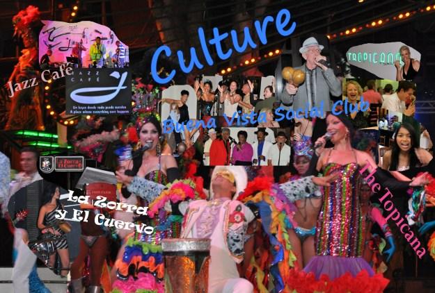 Culture Collage