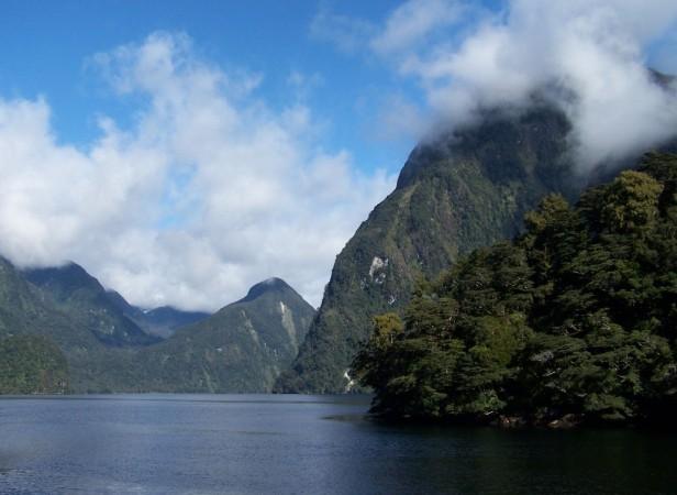 Fiordland-1