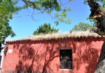 house w grass growing on roof, Colonia, Uruguay-02-03-13