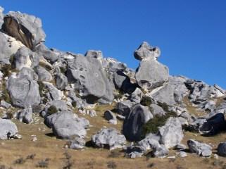 Kura Tawhiti, Castle Hill-e 4-21-07