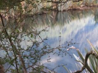 Mirror Lakes, Fiordland NP - 4-16-07