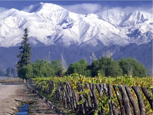 Concha-y-toro-vineyard-Santiago-Chile